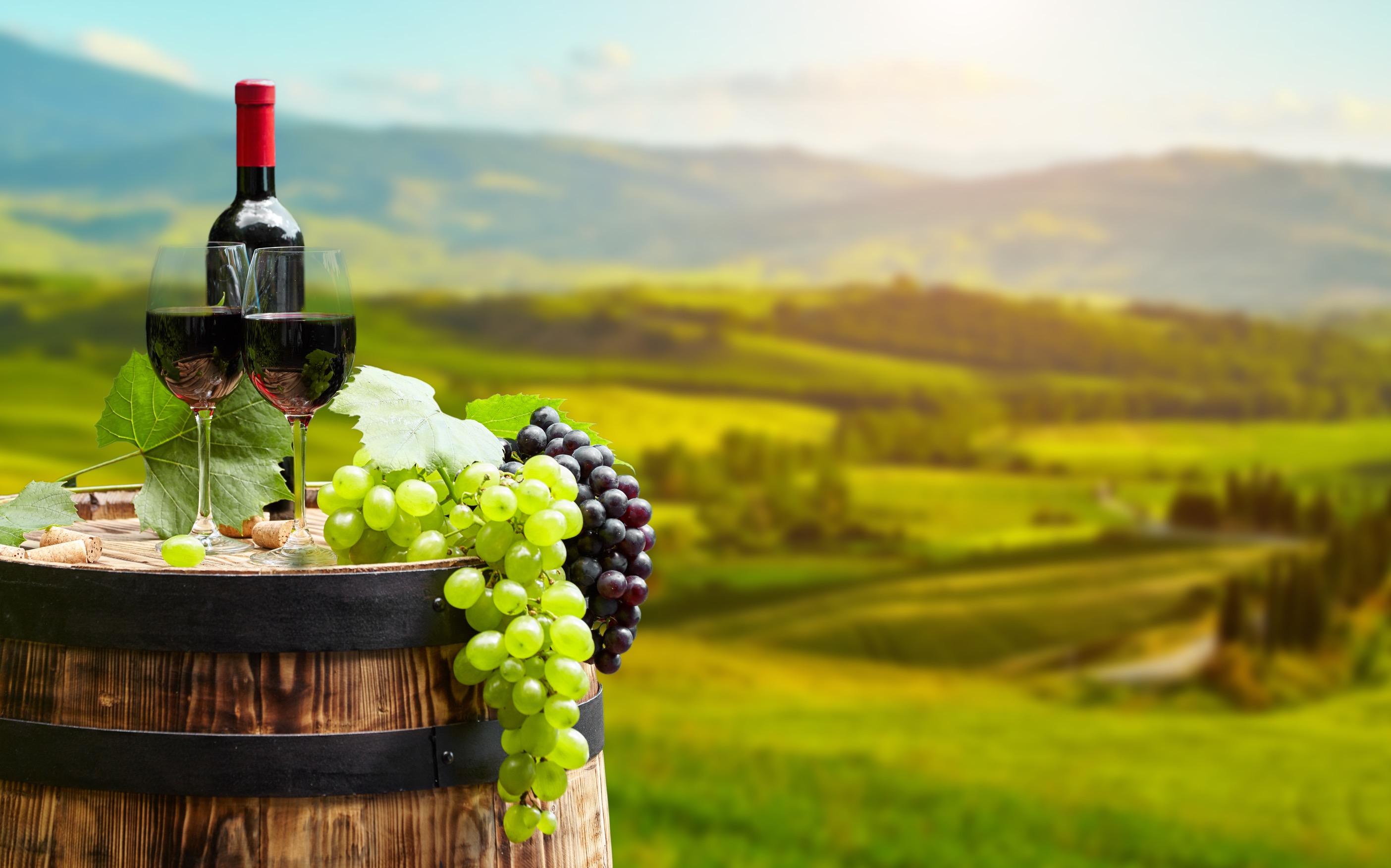 世界が注目するオーストラリアワインの歴史と特長を徹底解説
