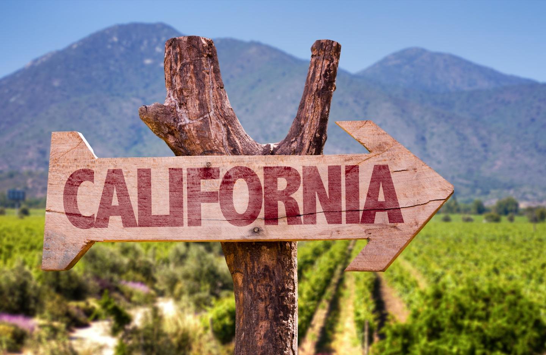 カリフォルニアワインの特長や歴史について
