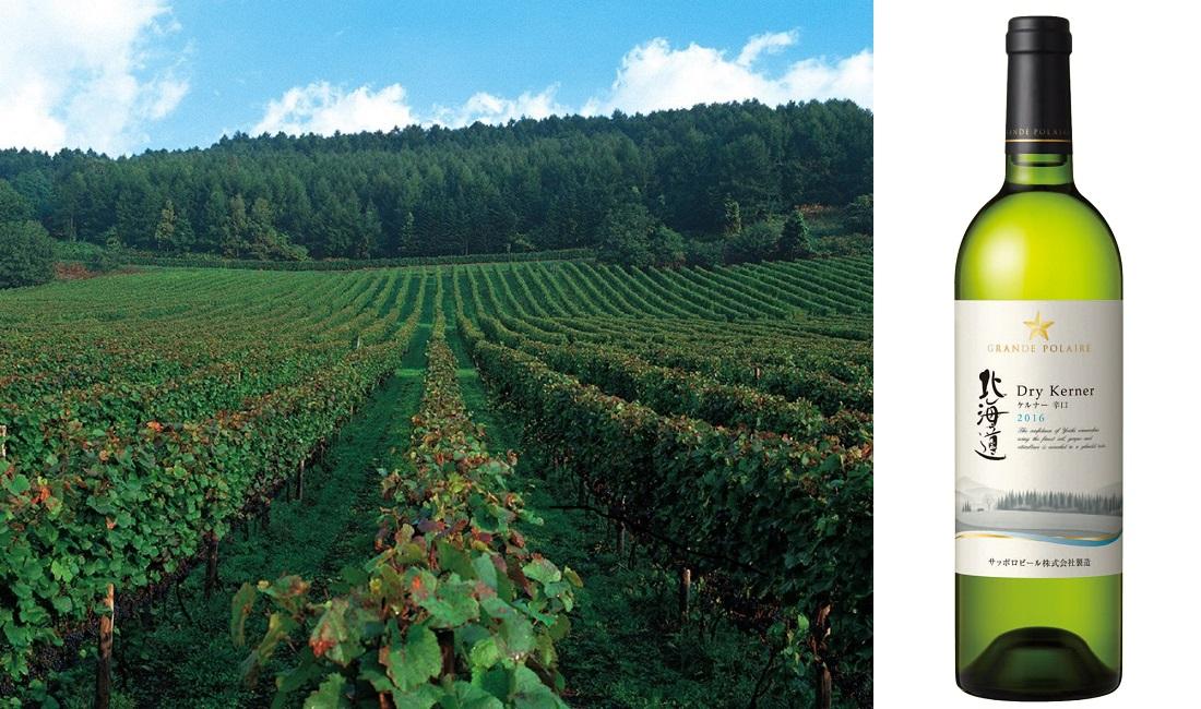 20歳の新成人におすすめしたい白ワイン、グランポレール 北海道ケルナー辛口