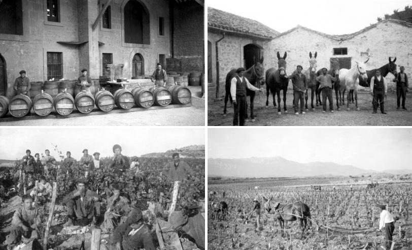 父の日に贈りたいマルケス・デ・リスカルの歴史4枚ショット