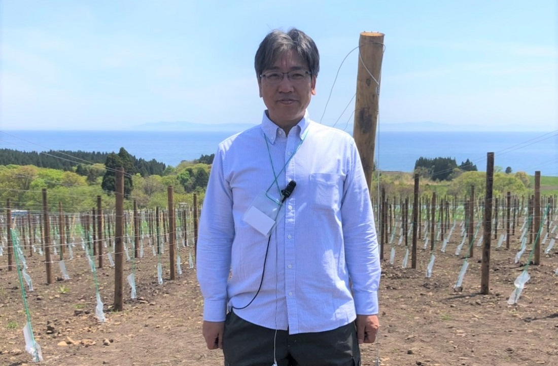 グランポレール北海道北斗ヴィンヤードの栽培責任者、野田