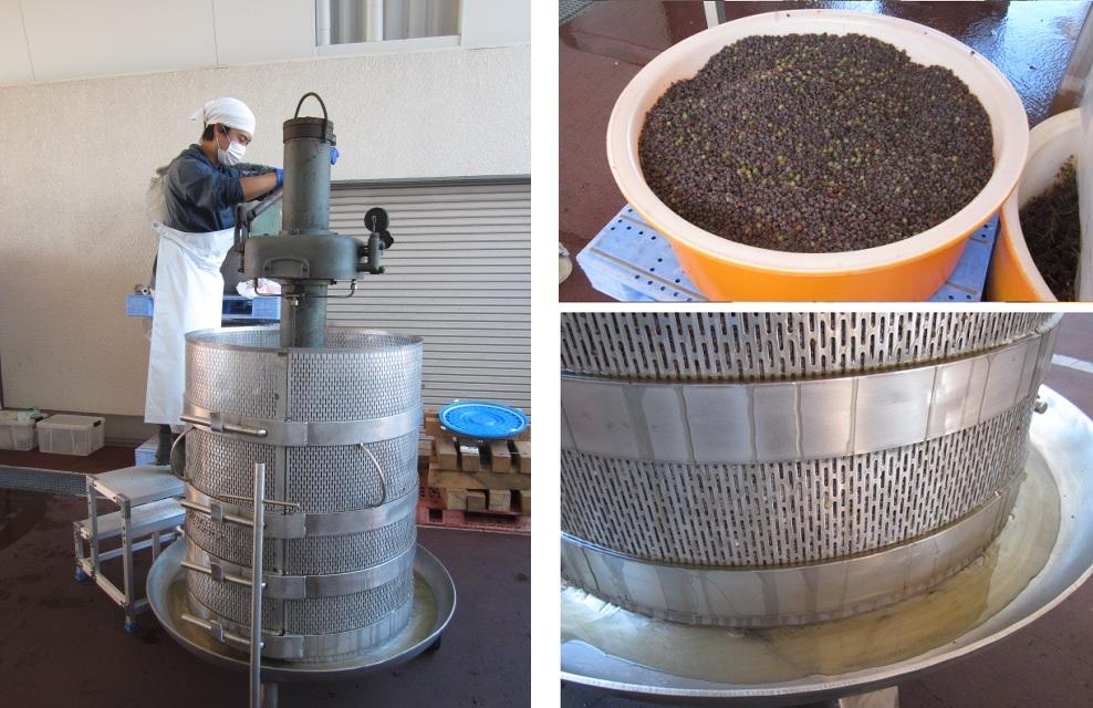 グランポレール貴腐ブドウ搾汁機と貴腐ブドウの搾り汁