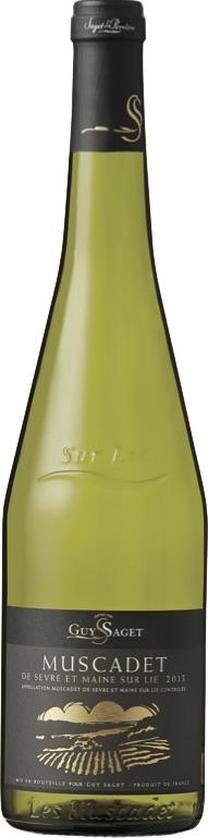 ギィ・サジェで自分だけのお気に入りワインを見つけよう