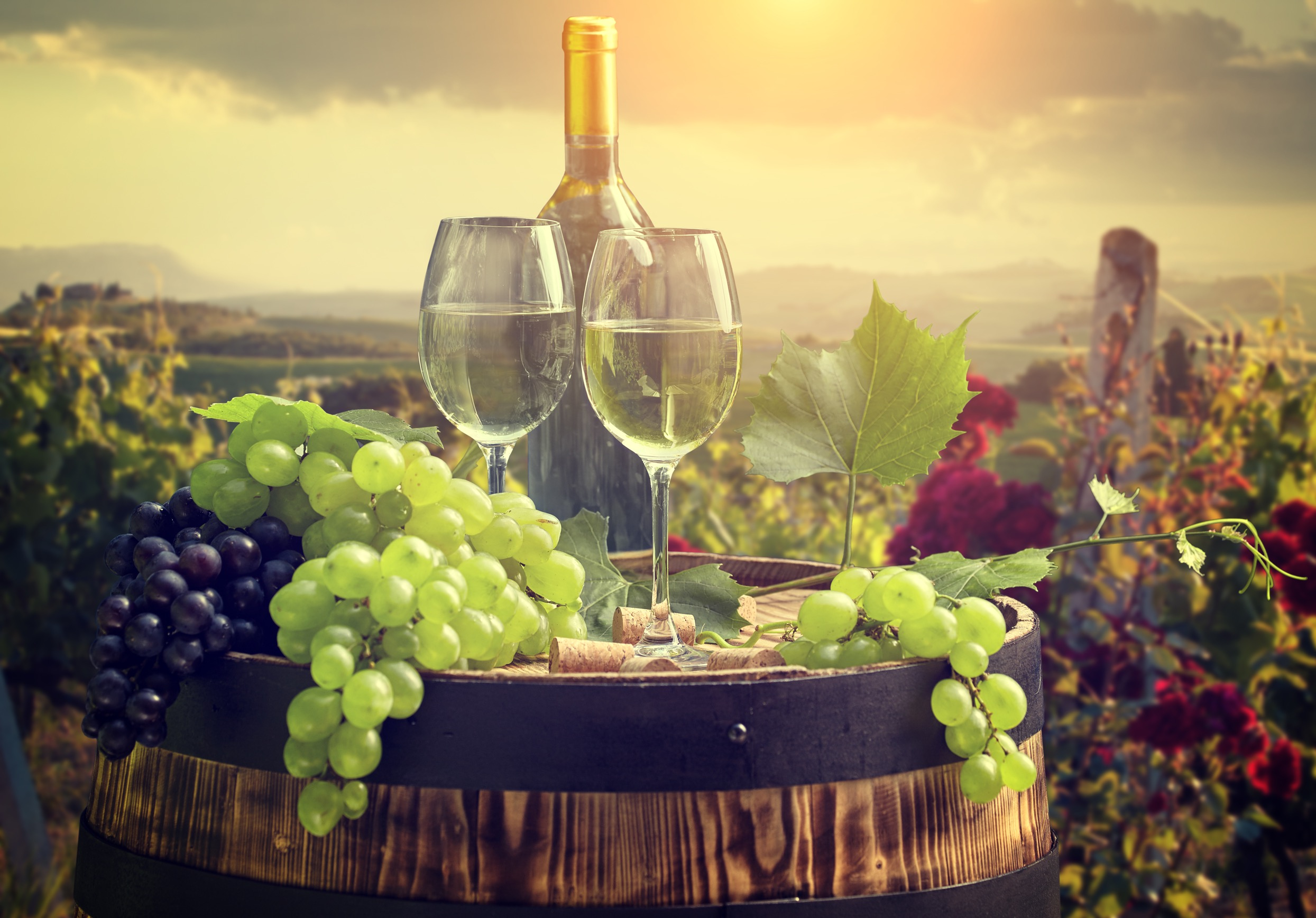 失敗しないワインの選び方を徹底解説!