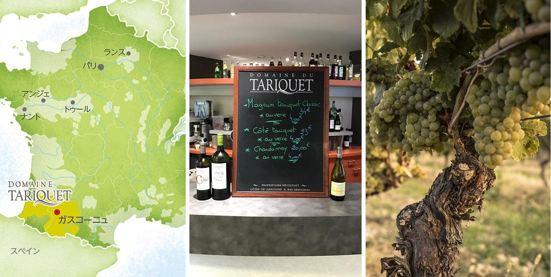ドメーヌ・タリケのフランス地図、メニューボード、ブドウの樹