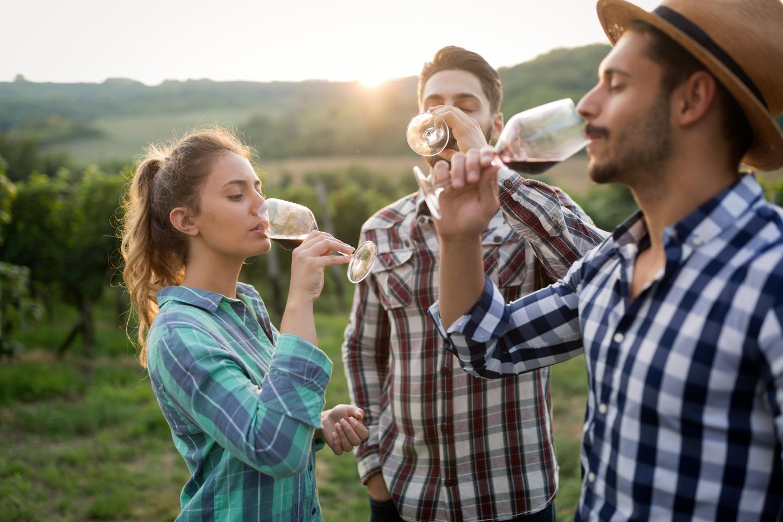 注目のオーストラリアワイン「ペンフォールズ」の独自性と魅力