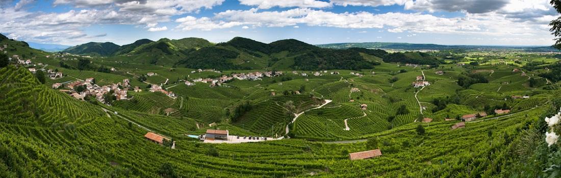 2019年世界遺産に登録されたヴァルドッビアーデネ・コネリアーノ地区のワイン畑のパノラマ