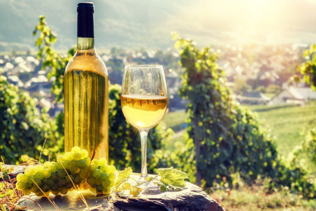 ドイツワインの魅力とは?ドイツワインの特長やおすすめ銘柄をご紹介!