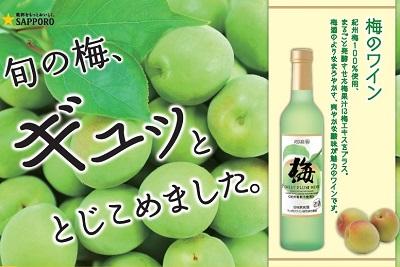梅の季節に梅のワイン