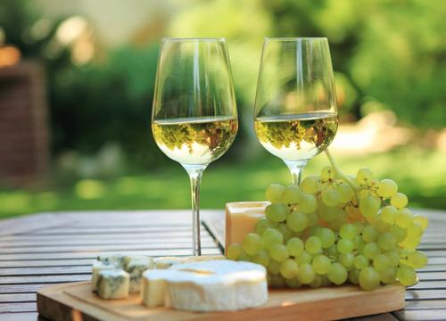 透明な色にくぎづけ。白ワインの洗練された魅力に迫る!