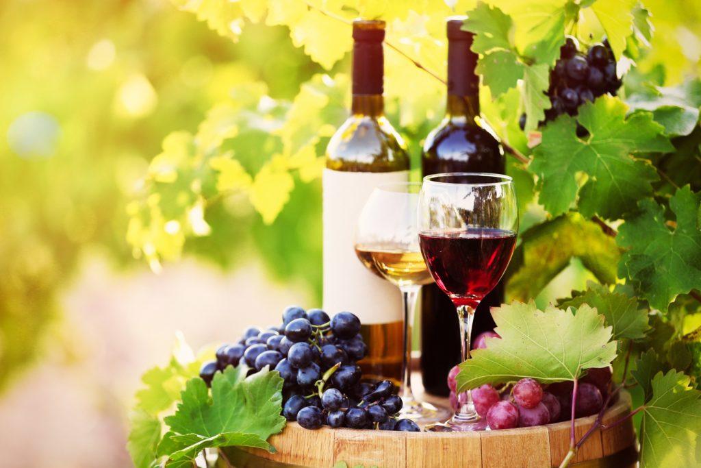 ワイン通なら知っておきたい!代表的なブドウ品種をご紹介
