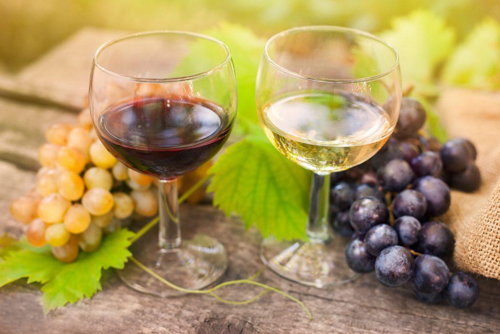 ワインのブドウ品種をご紹介