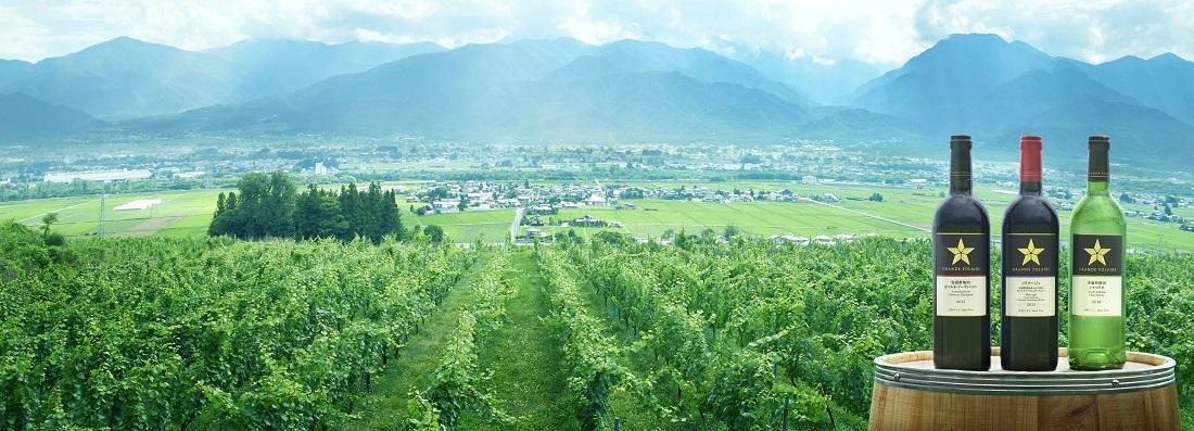 グランポレール安曇野池田のブドウ畑と安曇野池田シリーズのワインボトル