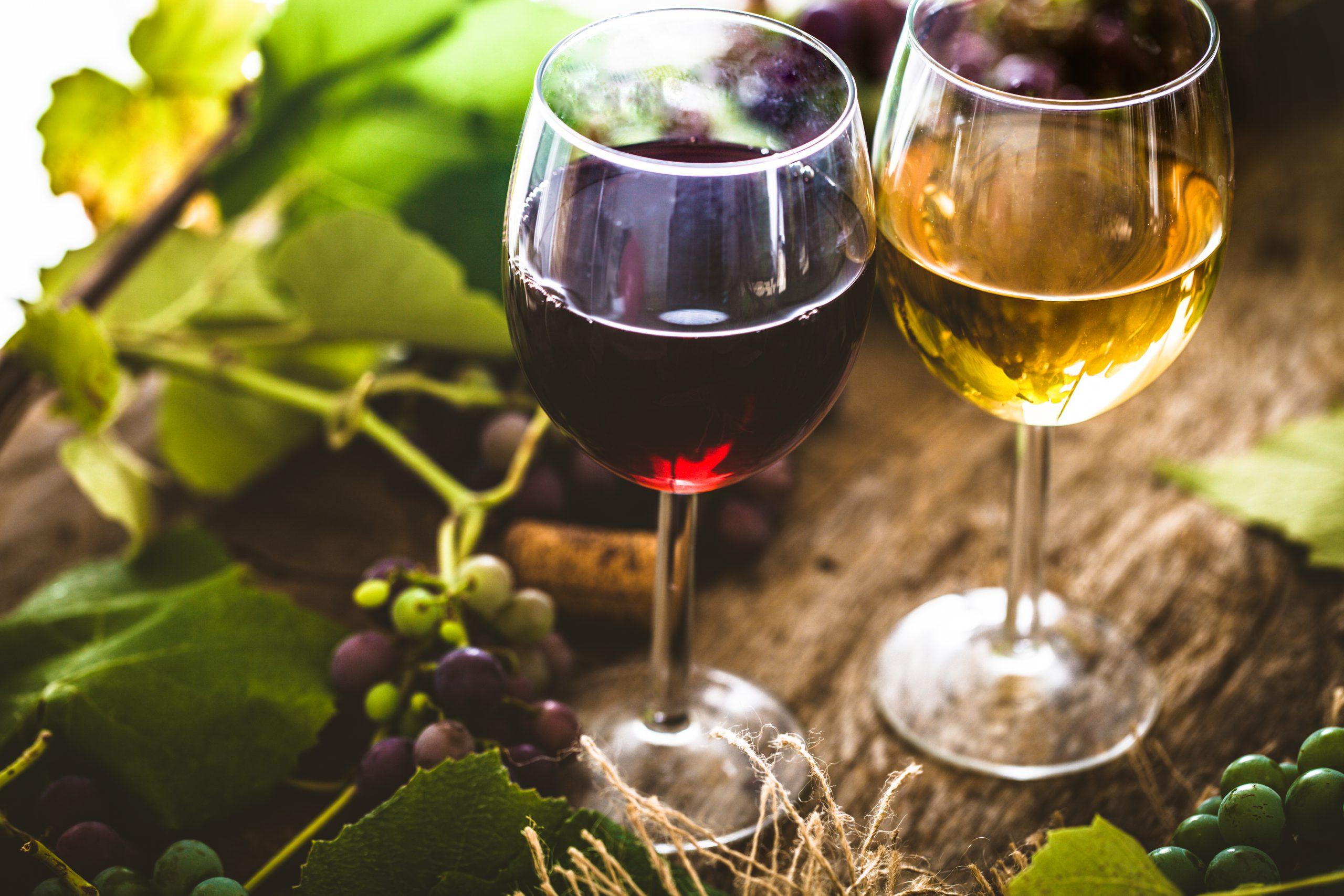 ワインの魅力がわからない…そんなときはコレを読めばワイン好きになる?!