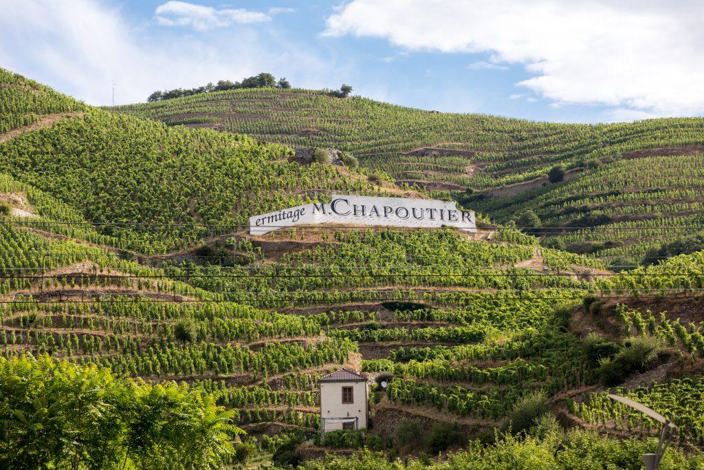 世界が一目置くワインブランド「M.シャプティエ」の魅力に迫る!