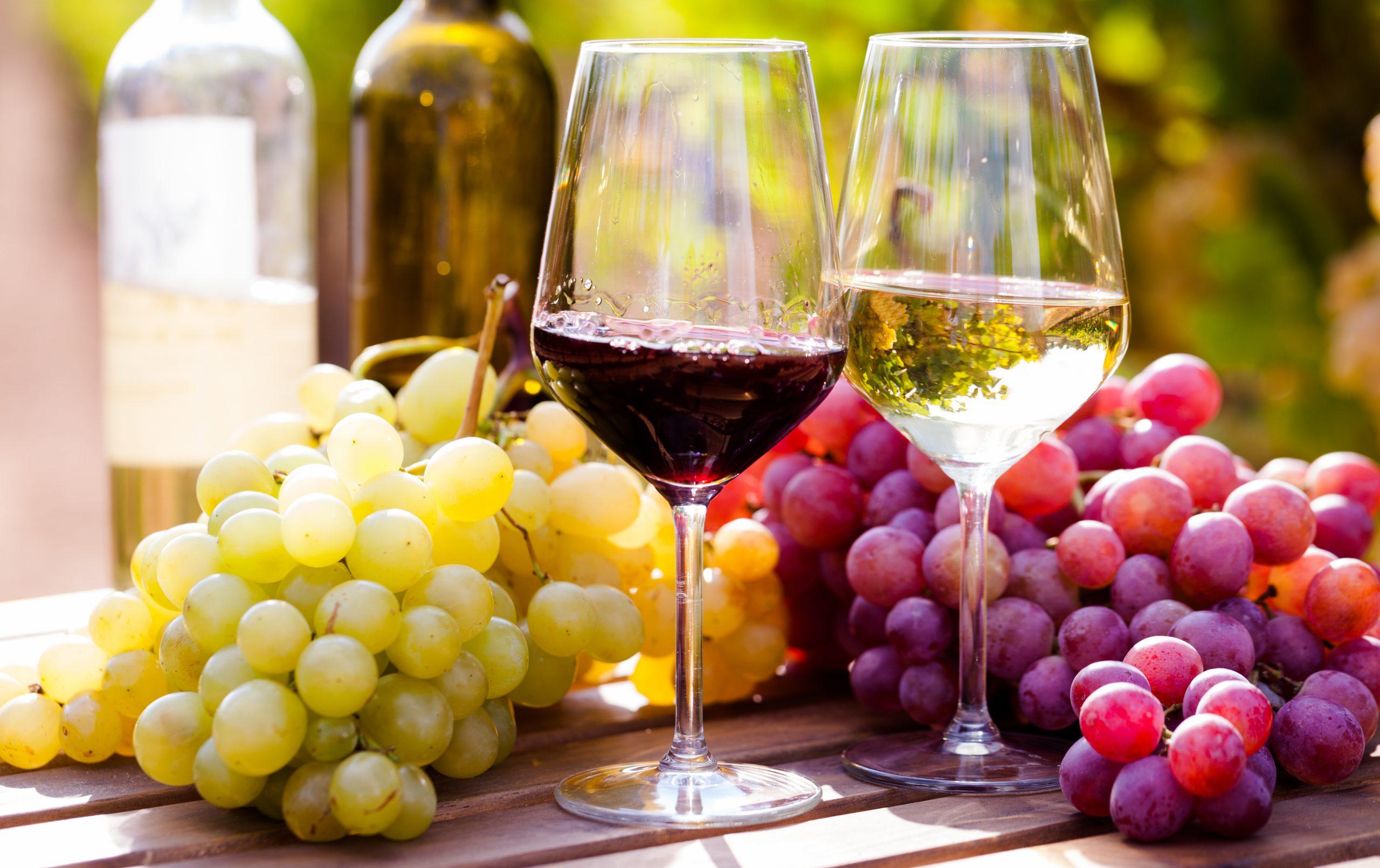 【ワイン初心者】おすすめのオーガニックワイン銘柄12選を赤、白、産地で選ぼう!