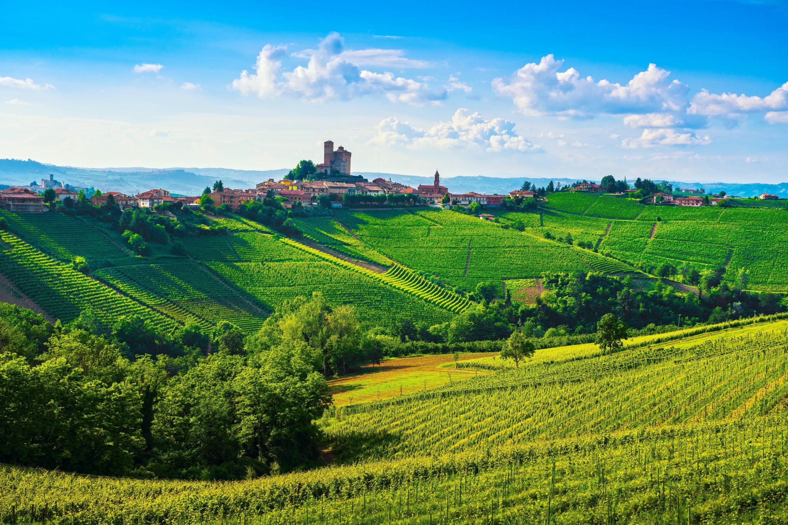高級ワインの宝庫!「北     イタリア」