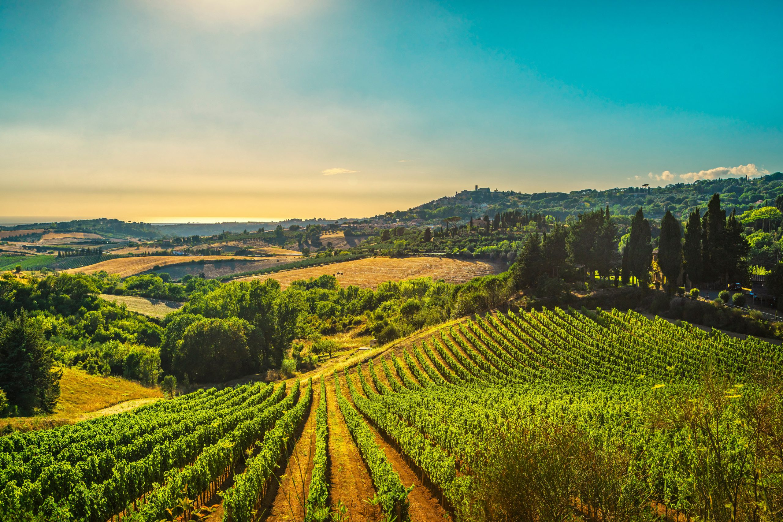 ワインの品質がピカイチ!「中部イタリア」