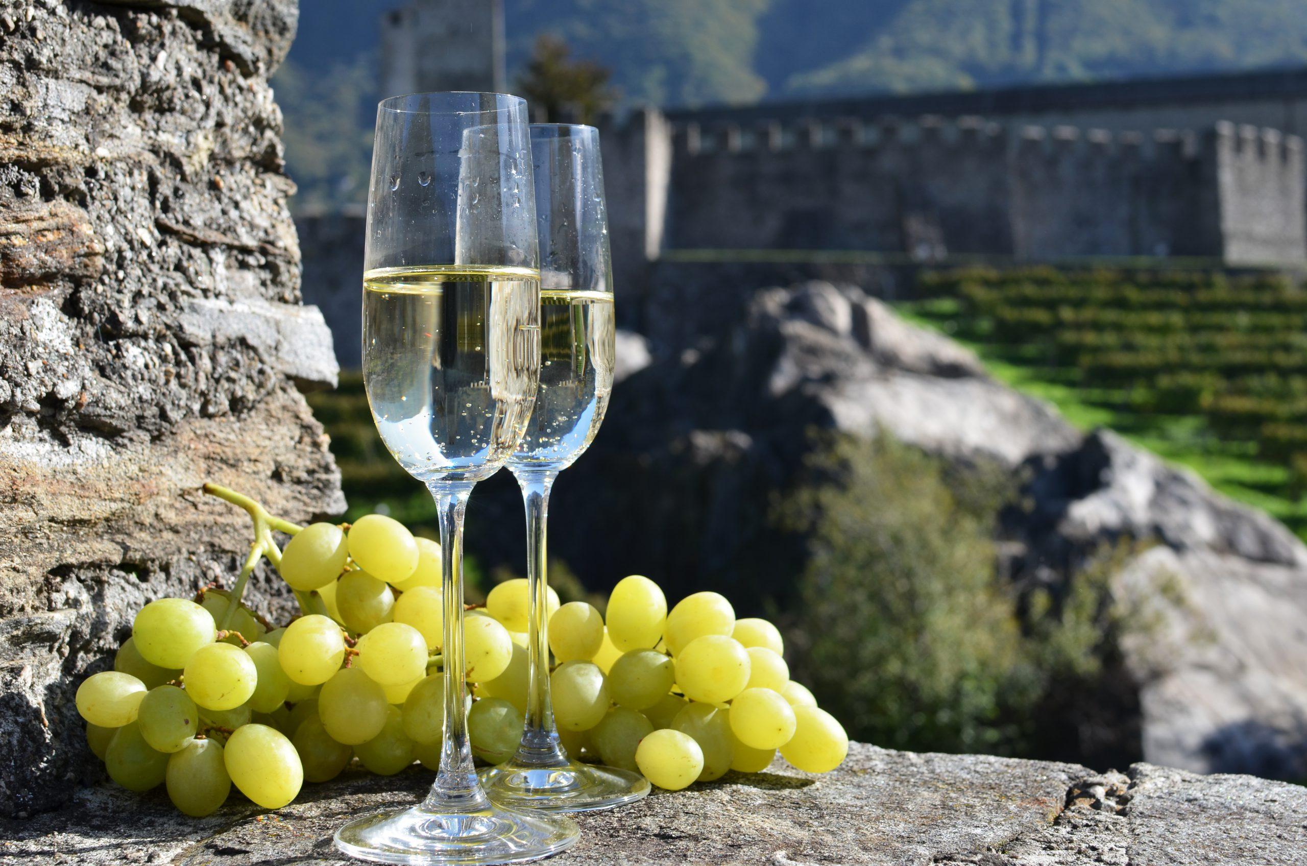 ブドウ品種「モスカート」の味わいや香りを知って楽しく味わおう